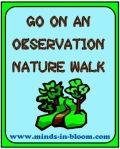 Observation Nature Walk